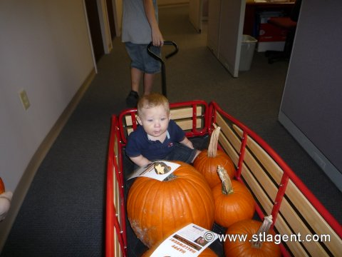 James and the Giant Pumpkin